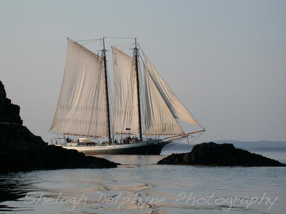 Shelagh Delphyne Photography Photographs Of Maine