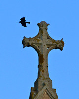The Crow and the Church